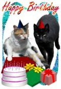 Cats Happy Birthday Card Quarter Fold Or