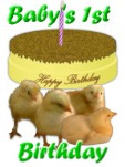 chicks gift wrap Babies first birthday