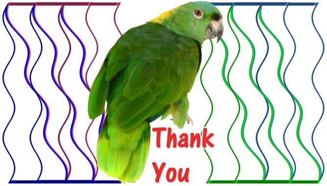 Image Result For Thank You Cards